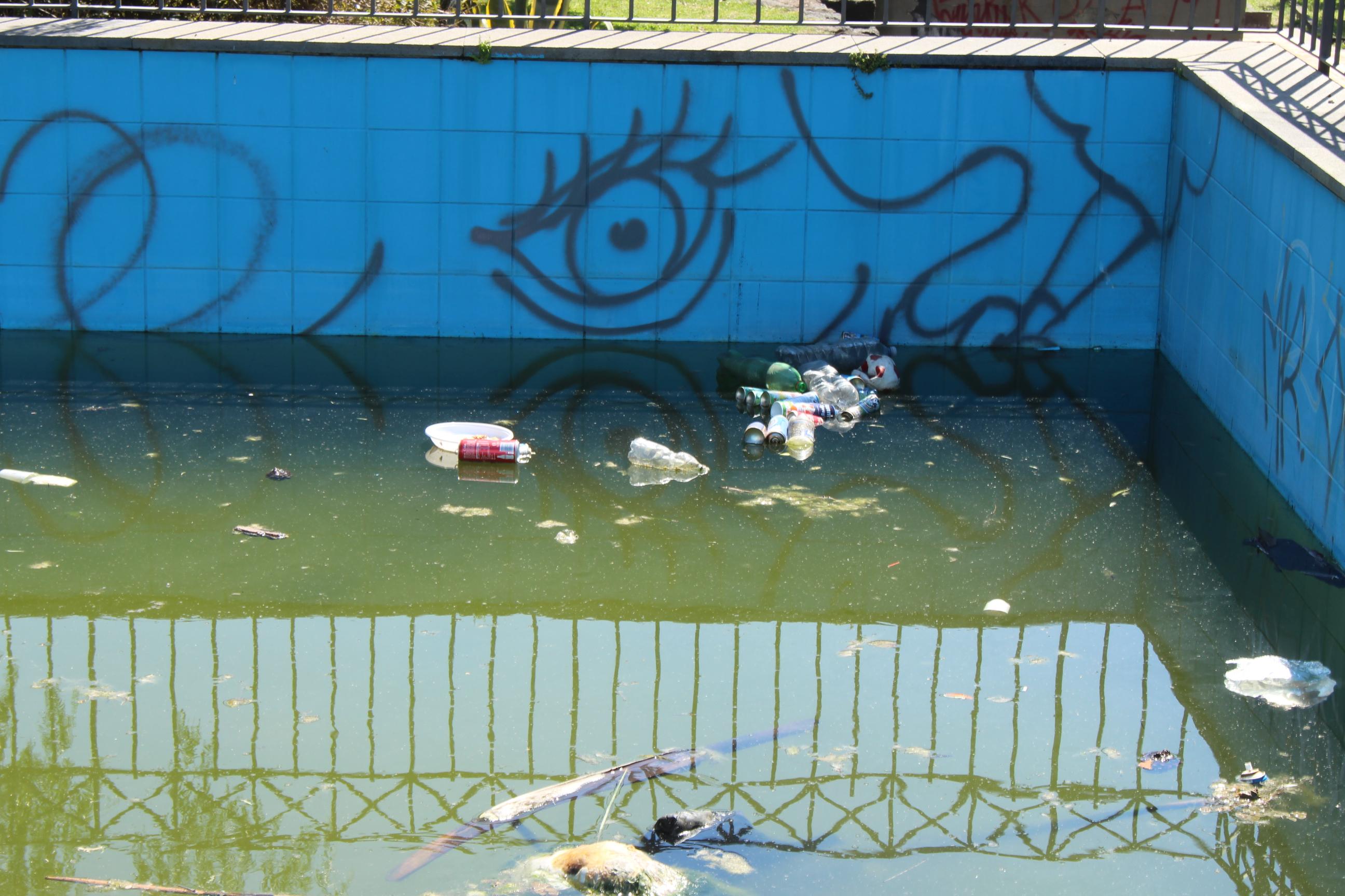 villa comunale - carcasse animali - mascalucia - UltimaTv (1)