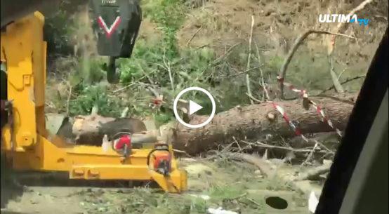 Nelle ultime ore anche nel catanese si fa la conta dei danni dopo il maltempo che ha flagellato dalla notte scorsa anche questa parte della Sicilia.