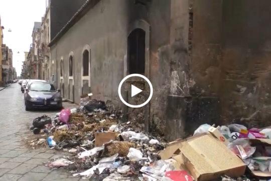 Situazione poco decorosa per insegnanti e piccoli alunni, quella della scuola Mimosa di San Cristoforo, dove i rifiuti fanno da padroni.