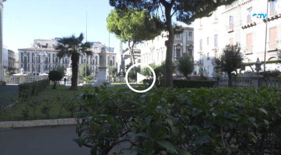 Uno spiacevole episodio è accaduto la scorsa notte nel giardino adiacente la cattedrale di Catania. Sono state rubate 30 piantine.