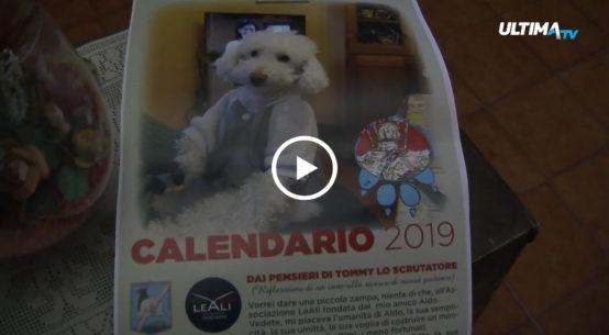 Presentato a Palermo il calendario 2019 del cane conosciuto come